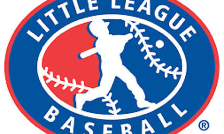 District 1 Little League canceled this season