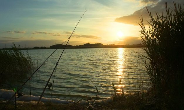 Get hooked on fishing with MDC Free Fishing Days June 6 and 7