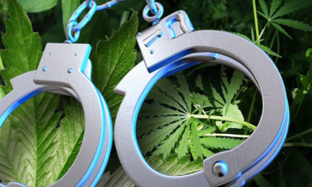 Mexican national pleads guilty to marijuana conspiracy in Daviess County