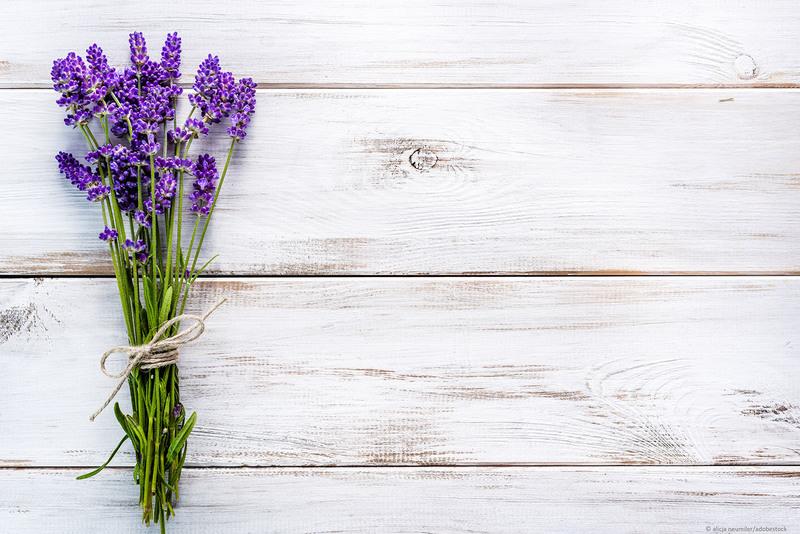 Lavendel als Wandfarbe.