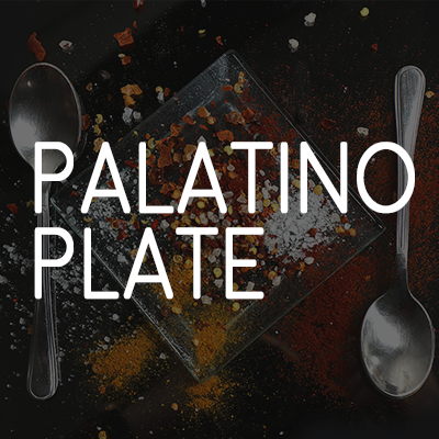 Pa-Latino Plate photo