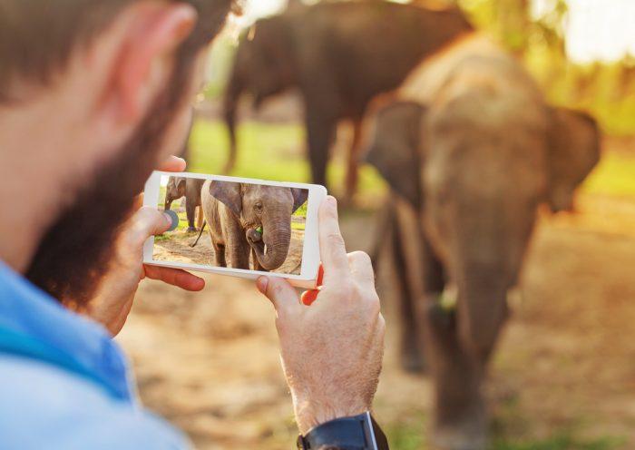 Invista em um celular com câmera de qualidade