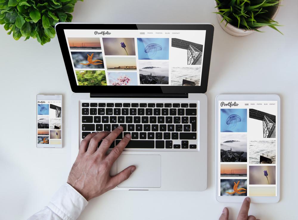 Portfólio: o que é, como fazer um portfólio profissional e exemplos