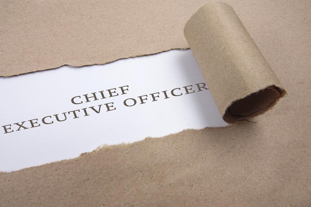 Conclusão o que é CEO