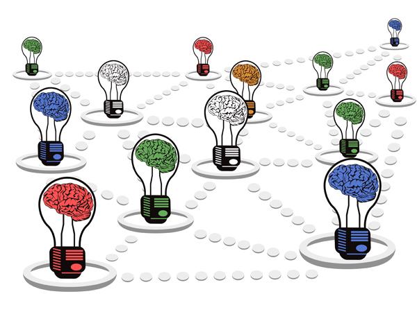 3 exemplos de inteligência coletiva