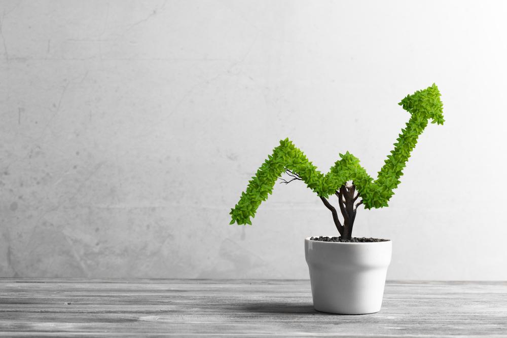 7 ações para deixar o seu negócio mais verde