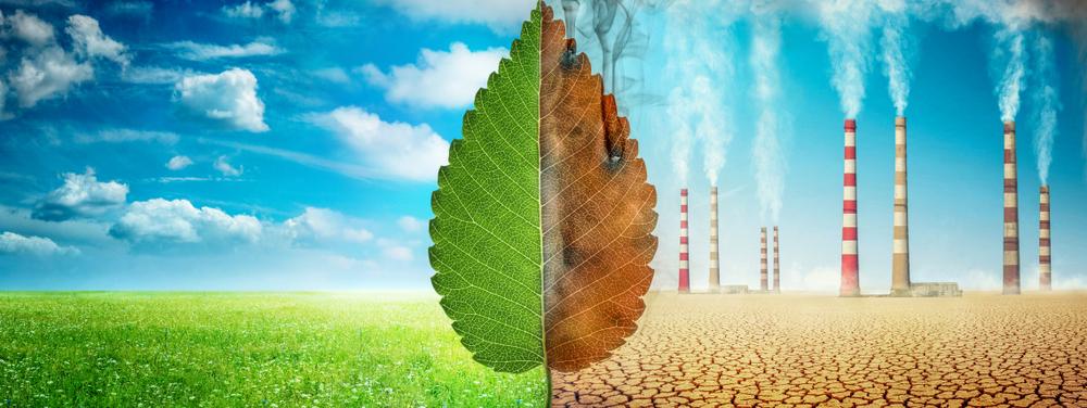 O que é greenwashing e por que não fazer