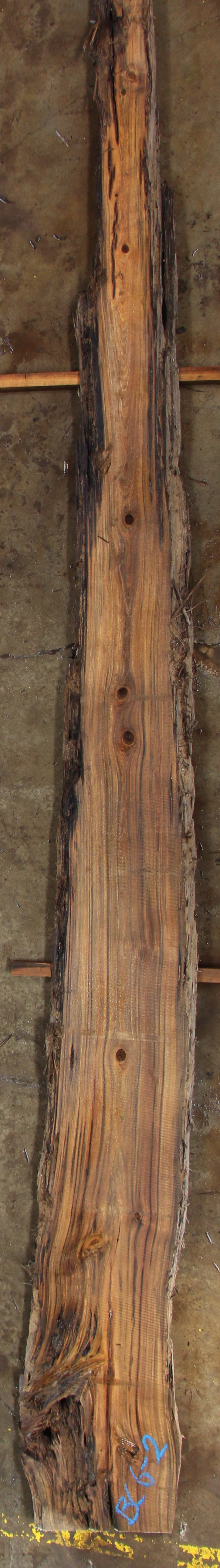 Krantz recovered woods buried cypress slab bc006 02 for Cypress log home prices