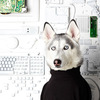 Representing the 1990s, Fernandez styled as the canine companion to Steve Jobs.