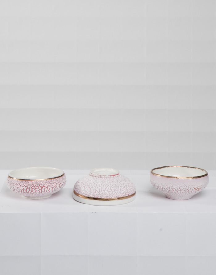 The Level 4 Reward: a Porcelain bowl with red slip, crawl glaze, and gold luster. Pledge $200 and get a set of 3 in addition to the other rewards!