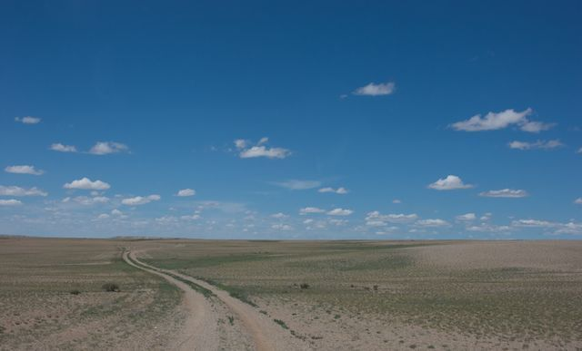In the Gobi the roads really do go ever on. Please join me on this artistic adventure by donating generously.