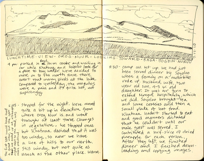 Journal entry, Orog Nuur (remote Gobi lake) July 2010