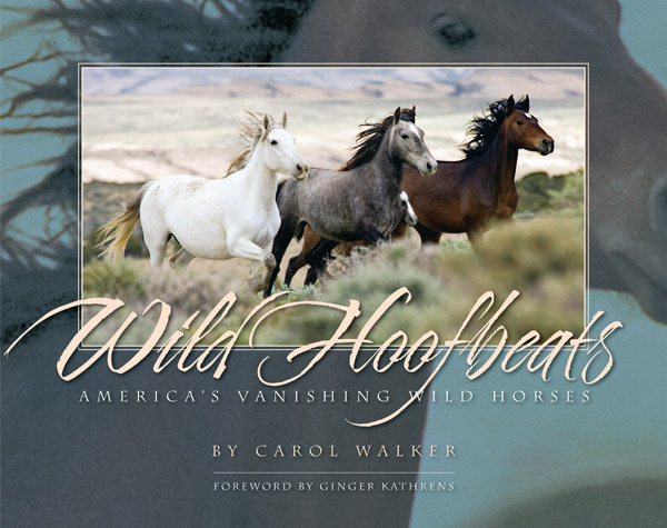 Wild Hoofbeats: America's Vanishing Wild Horses by Carol J. Walker