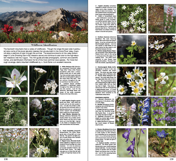 Sample spread from the Flower Identification section (page 138-139)