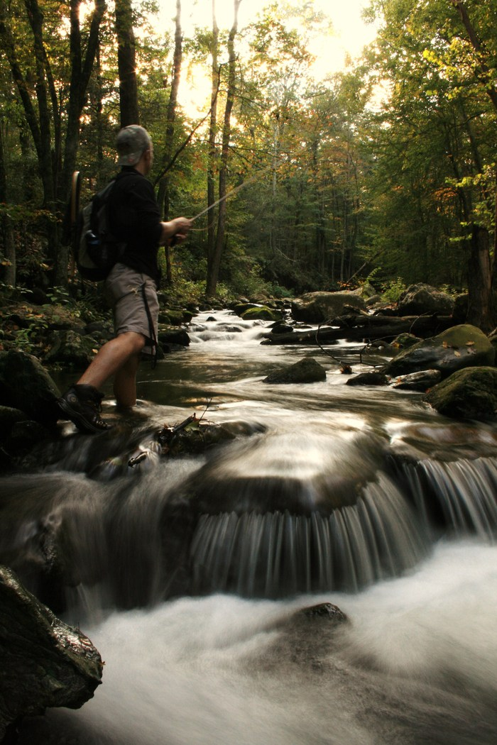 The author chasing the native Brook Trout