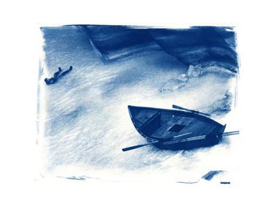 Havasu Dory  (cyanotype)