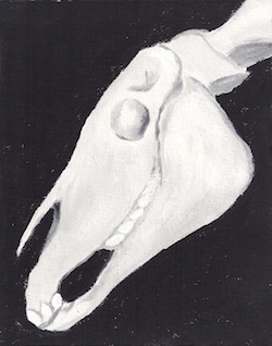 """The Skeletal Horse"""