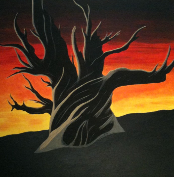 """Bristlecone pine at Dusk"" oil on canvas 36"" x 36"""
