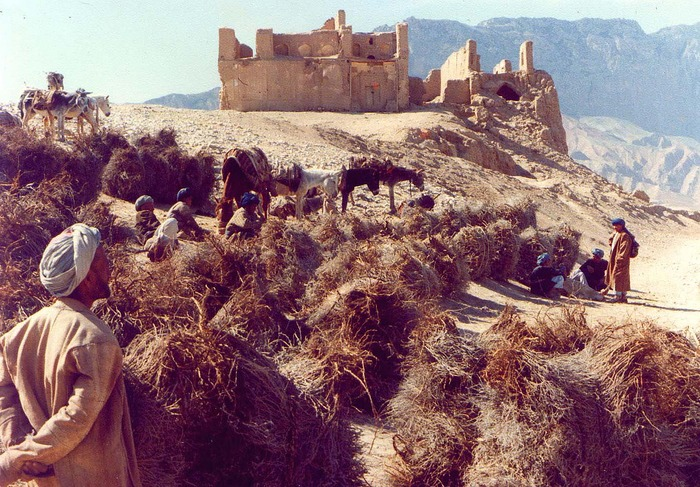 Tashqurgan, Northern Afghanistan  (T. Cole, 1978)