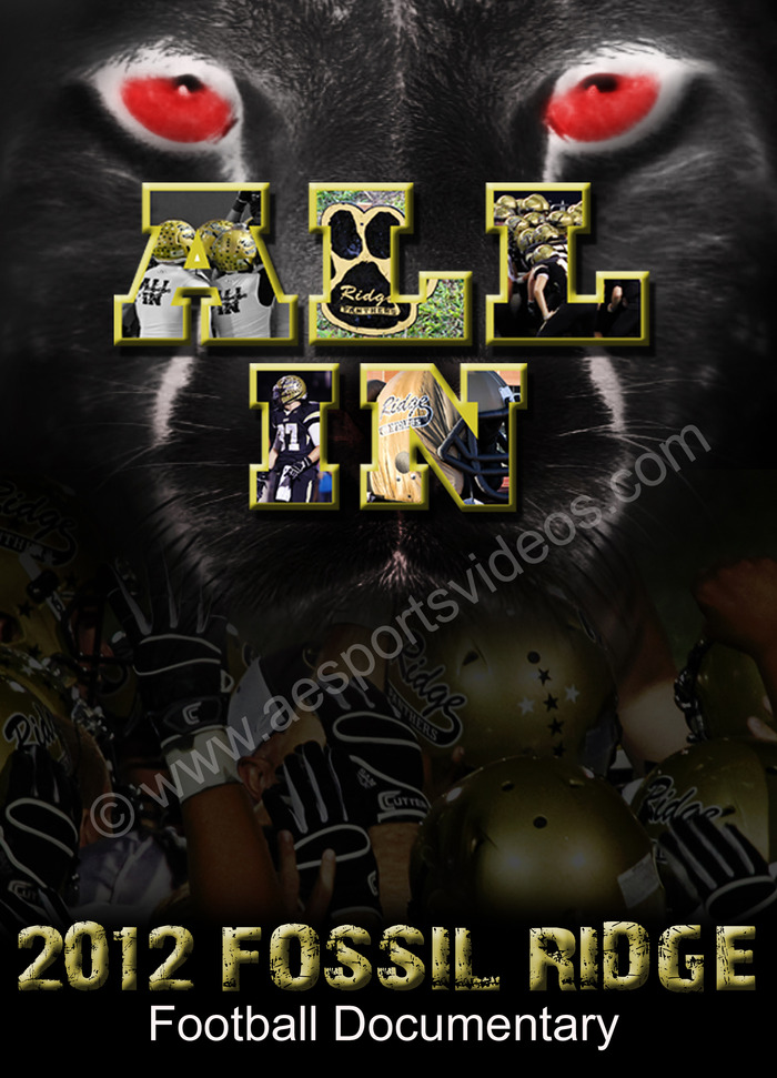"""ALL IN"" DVD COVER"