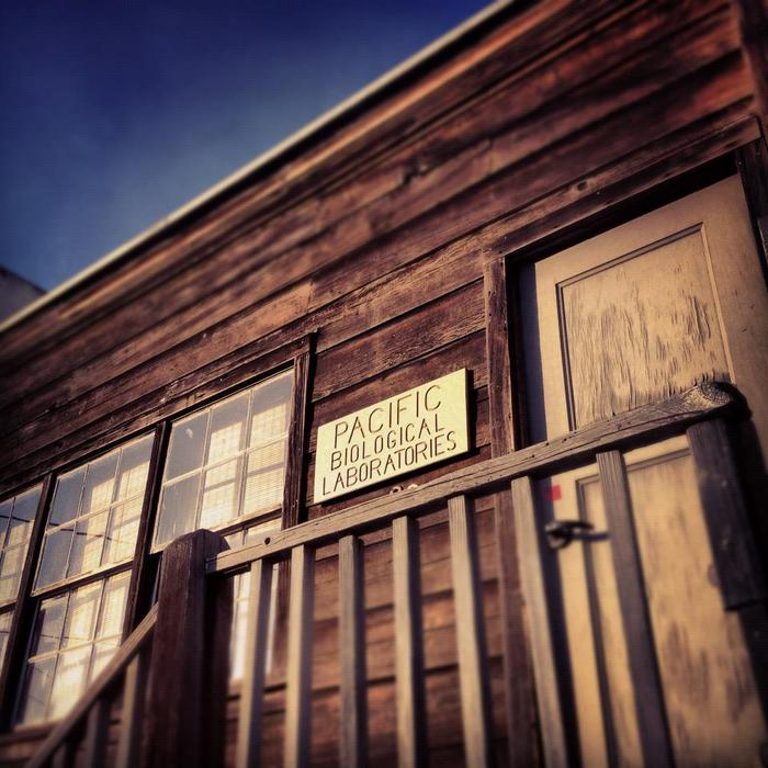 ON LOCATION | Ed's Lab on Cannery Row