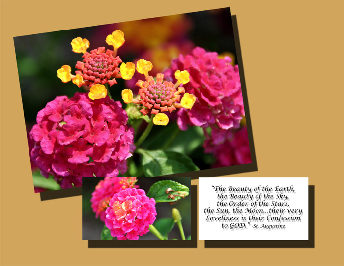 "Sample of 5""x 7"" Notecard with a 2"" x 3.5"" Motivational Quote Insert"