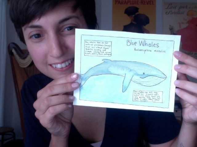 Whale doodles: cute & educational!