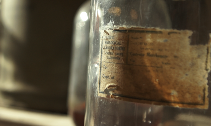ON LOCATION: Original label for PBL specimen bottles in the basement of the Lab