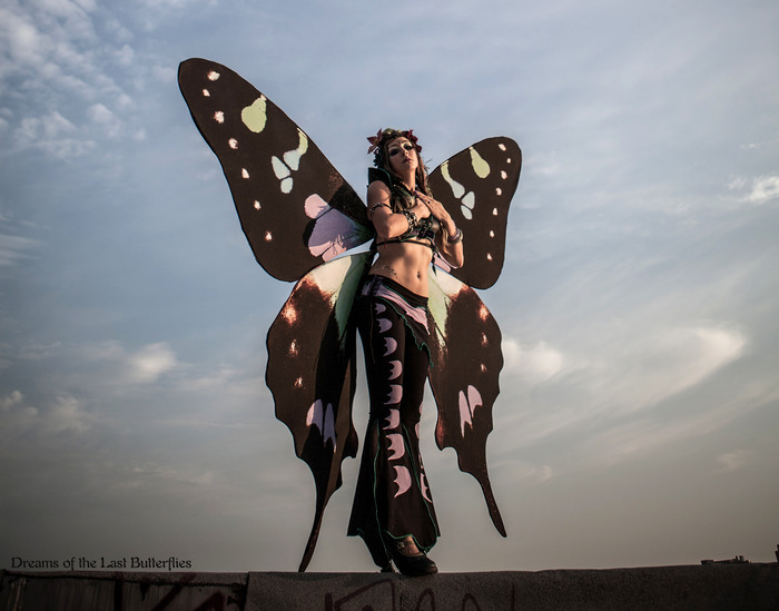 Ali Luminescent as the Purple Spotted Swallowtail Queen.  Photo by Benjamin Mobley.