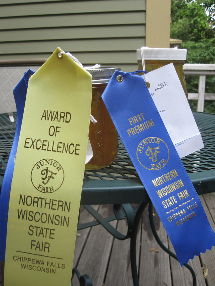 Natalie wins the Award of Excellence in the 4-H building this year for her comb honey.