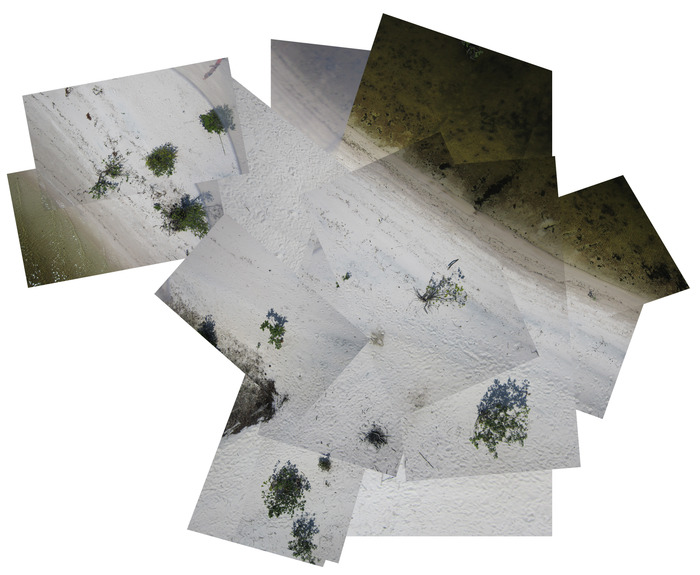 Kite-mapping field test:  aerial photographs taken from a cell phone camera can provide a new perspective of Amazon River community lands.