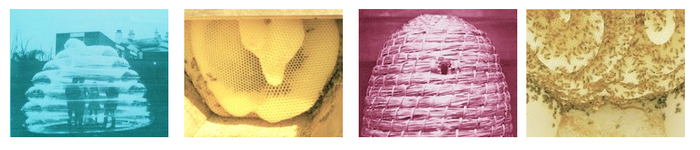 Parabolic Skeps and Honeycomb Forms