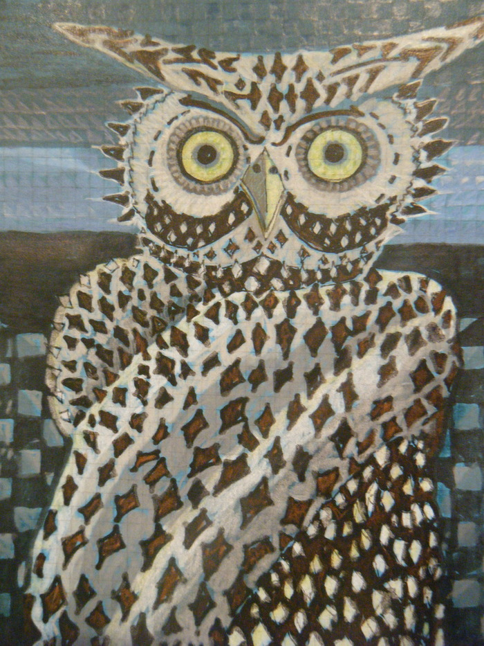 Owl greeting cards, box of seven for $25 pledge