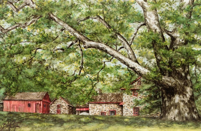 """Sycamore of the Brandywine"" - lithograph 29.5""x15"""