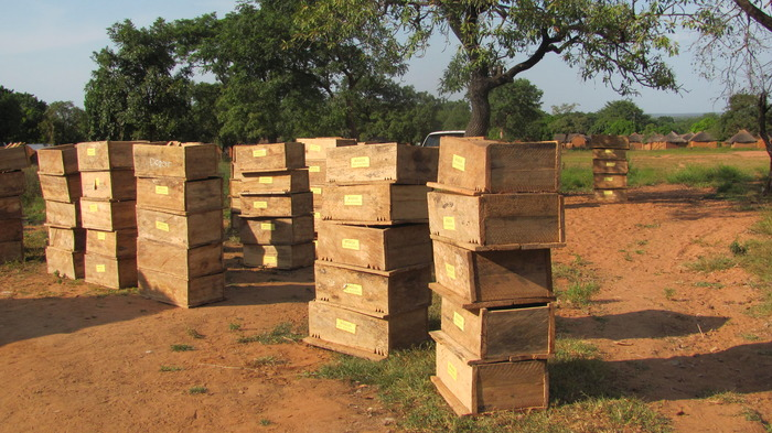 Beeboxes being distributed to the co-operative.