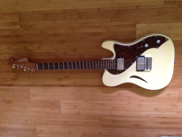 You could get this Cole Clark electric guitar!!!!