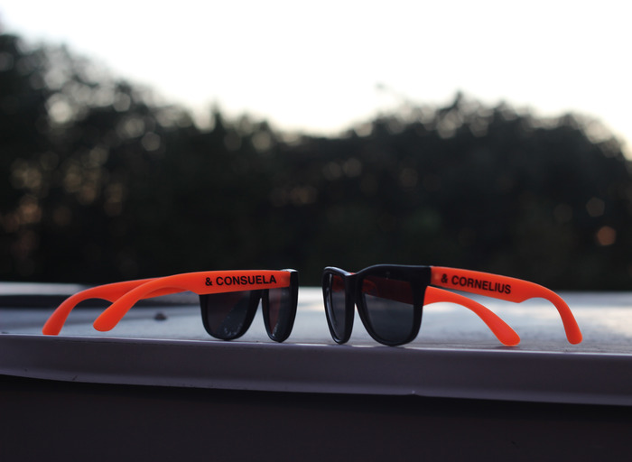 These are the sunglasses we'll give you to thank you for pledging!