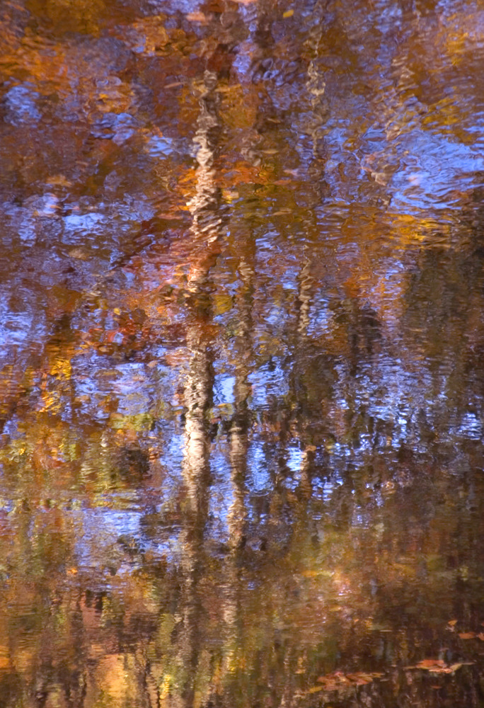 Chattooga River Reflection
