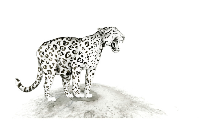 JAGUAR, Original pen & ink - Example of $1000 Pledge