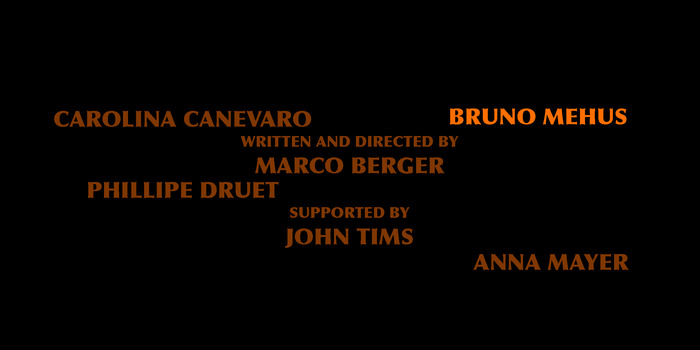 Graphic 1 - The contributors name will appear one by one surrounding Marco's name just after the movie ends