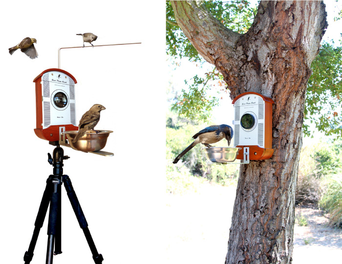 Real photos of birds and prototype shown.
