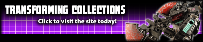 Click to visit transformingcollections.com!