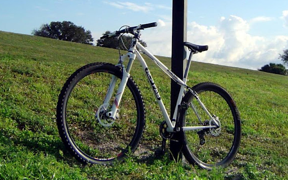 A 29er built for Flordia's trails.