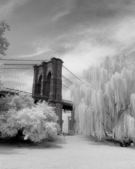 © Dave Beckerman 2008 - Brooklyn Bridge.  12x16 signed & matted Silver Gelatin Fiber Print
