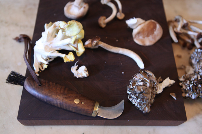 ADULT CLASS REWARD: Mushroom knife and mushroom class by Chris Harth