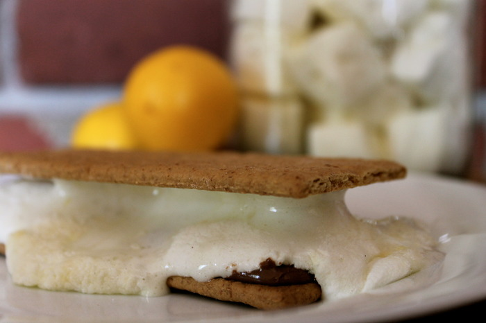 Lemonage  à Trois puffs melting perfectly in a classic S'more.  Stop licking your screen!