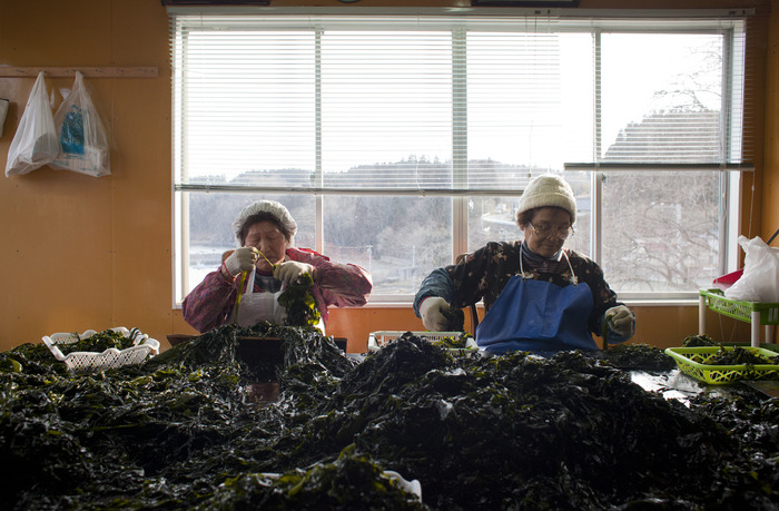 'Kelp (Wakame) Ladies'