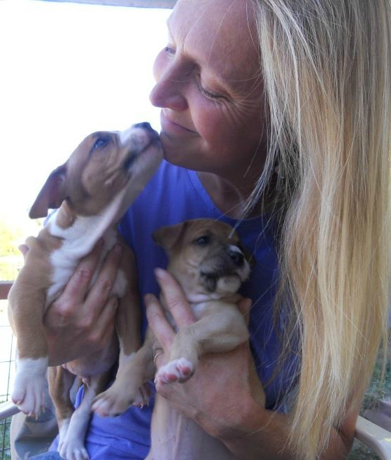 Caring for orphaned puppies is time consuming but rewarding