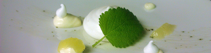 When life gives you lemons:   Lemon mousse, lemon meringue, lemon confit and lemon balm.