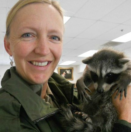 Rescuing a baby raccoon is a fun part of the job.